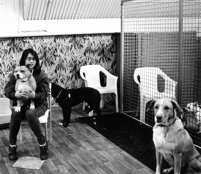Phoebe and dogs, Dog Villas, Bohemia Place, Hackney E8