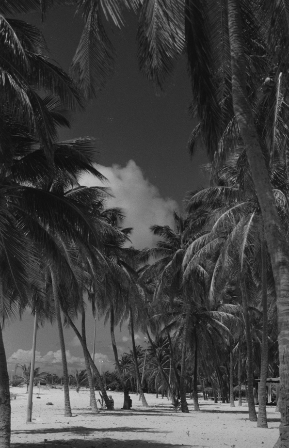Desirade, Guadeloupe