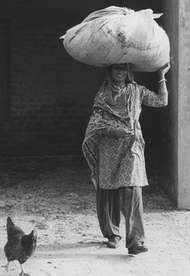 Farm lady, Chakmuglani