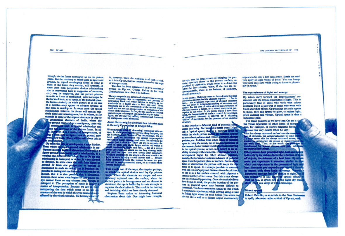 English Idioms: it's a Cock and Bull story (Cyanotype photocomposite)