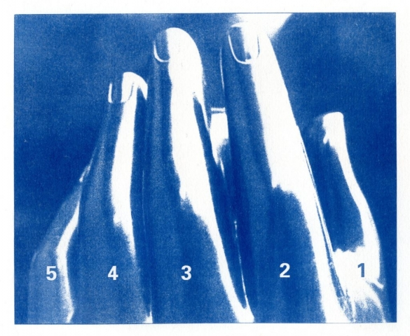 English Idioms: ...count on the Fingers of one Hand (Cyanotype photocomposite)