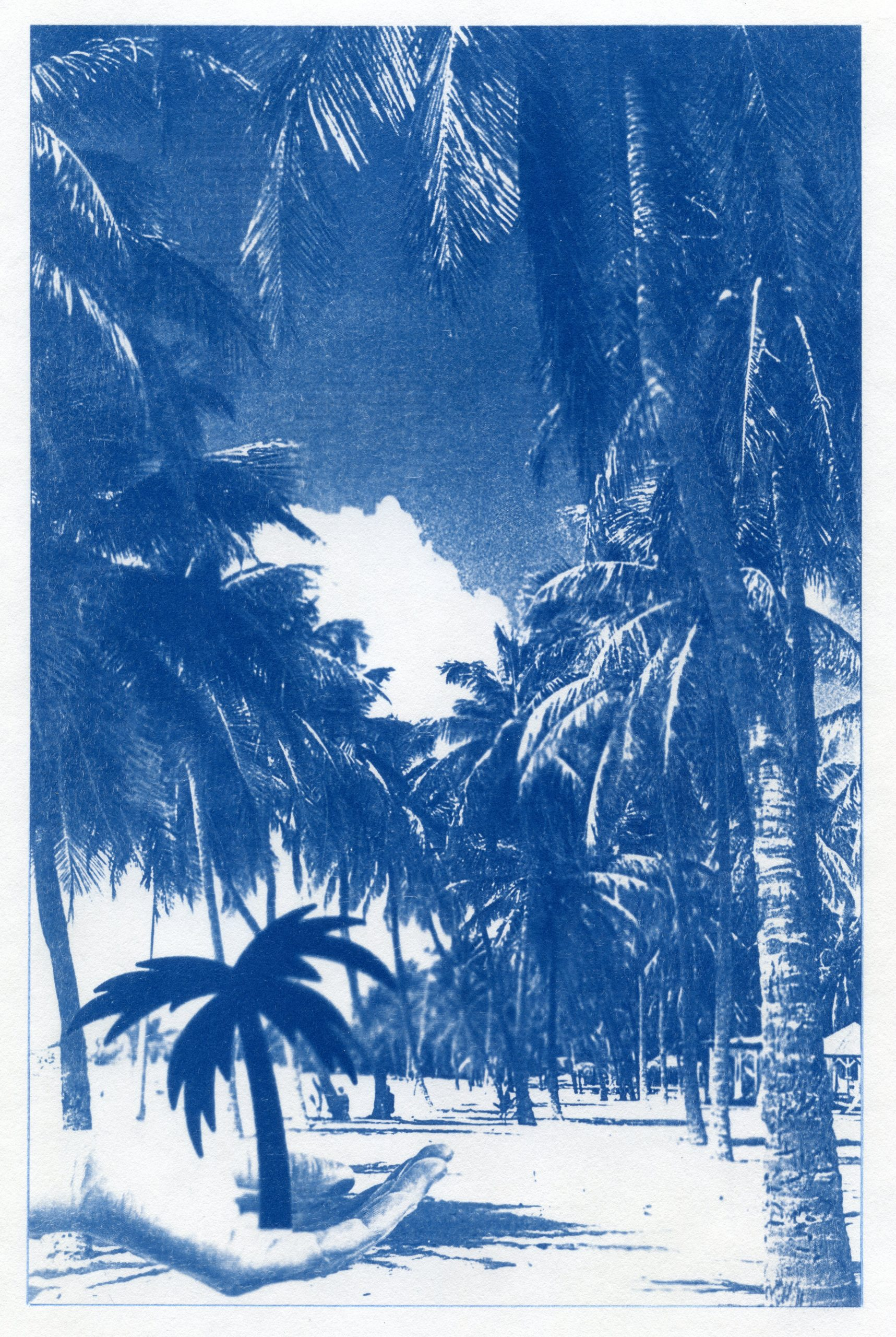 English Idioms: in the Palm of your Hand (Cyanotype photocomposite)