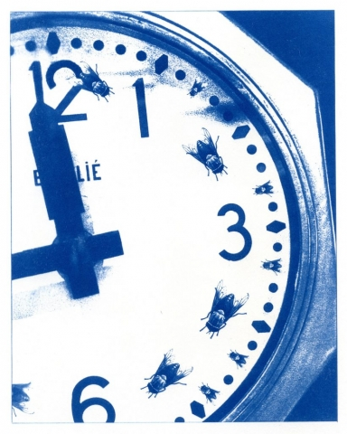 English Idioms: how Time Flies (Cyanotype photocomposite)